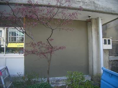 20110418006.jpg
