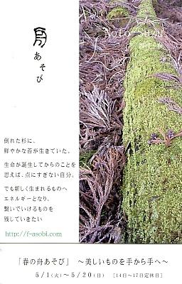 20120424-025.jpg